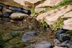 Фотографии работ ландшафтной студии ГринСтайл